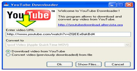Scaricare Video con YouTube Downloader